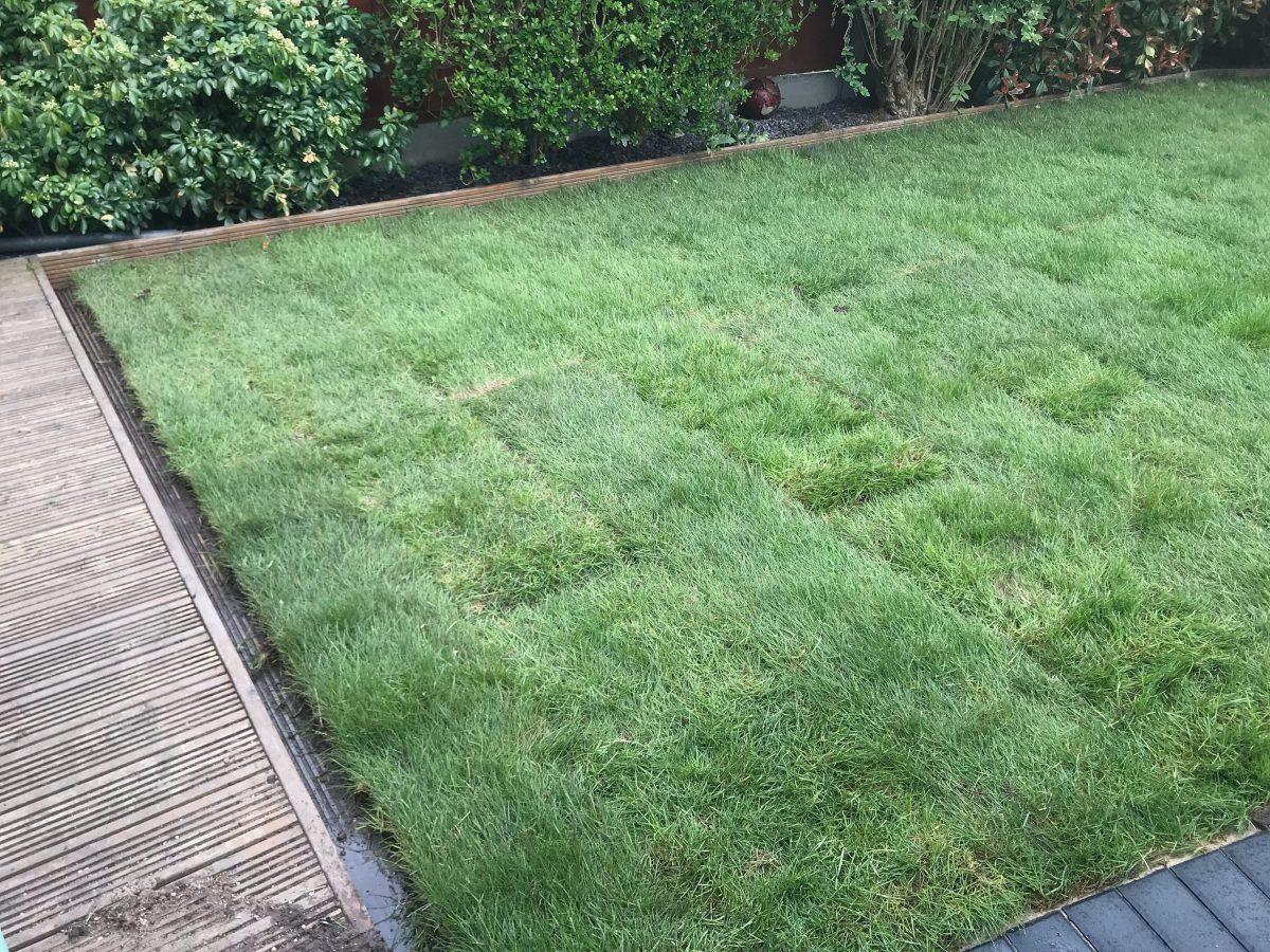 jcgardendesign: Garden Design Wirral